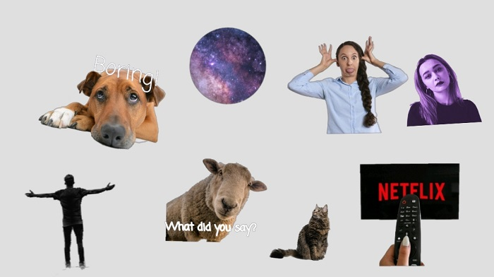 make stickers for WhatsApp, how to make your own WhatsApp sticker, whatsapp stickers, whatsapp sticker, sticker for whatsapp chats, meme stickers, meme stickers for whatsapp, whatsapp stickers